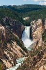 Great Canyon of Yellowstone